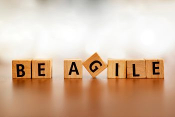 Agility:  is it a useful concept for the development of computer hardware?